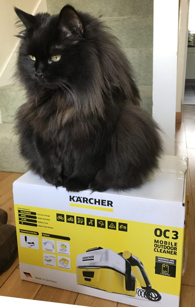 Kärcher OC3 Mobile Outdoor Cleaner - Box Strength Test